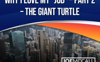 """Why I Love My """"Job"""" – Part 2 – The Giant Turtle"""